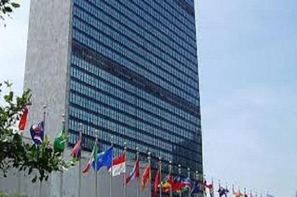استقبال سازمان ملل از پیشنهادات ایران برای حمایت از معلولان