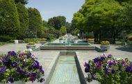 مناسبسازی ۵۰ درصد از پارکهای آستارا