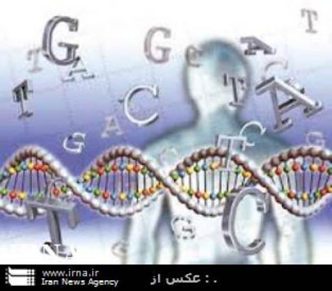 اجباری شدن آزمایش های ژنتیک پیش از ازدواج در دستور کار است
