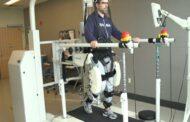 مطالعاتی جدید برای یافتن رابطه میان ذهن انسان و کنترل راه رفتن با استفاده از رباتها